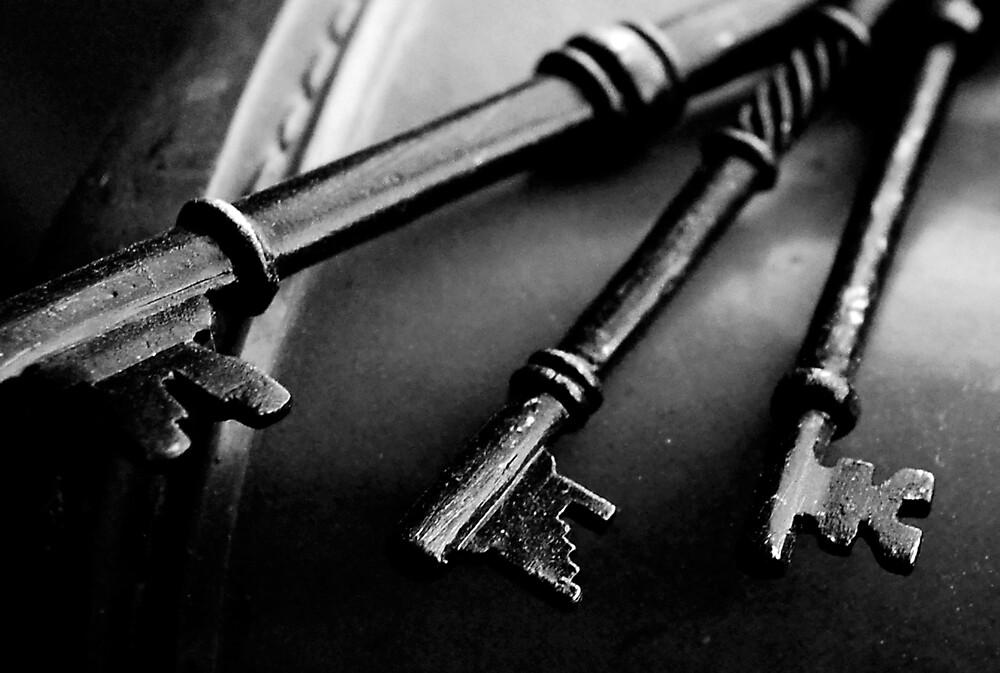 Skeleton by Karina Kaiser