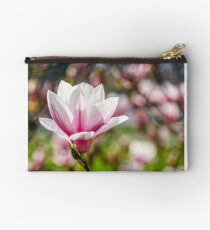 Magnolia flower blossom in springtime Studio Pouch