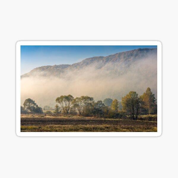 morning fog among trees Sticker