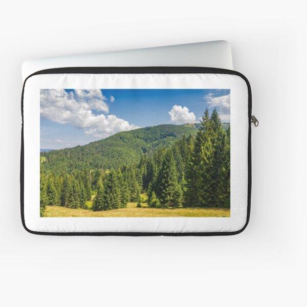 pine forest in summer landscape Laptop Sleeve