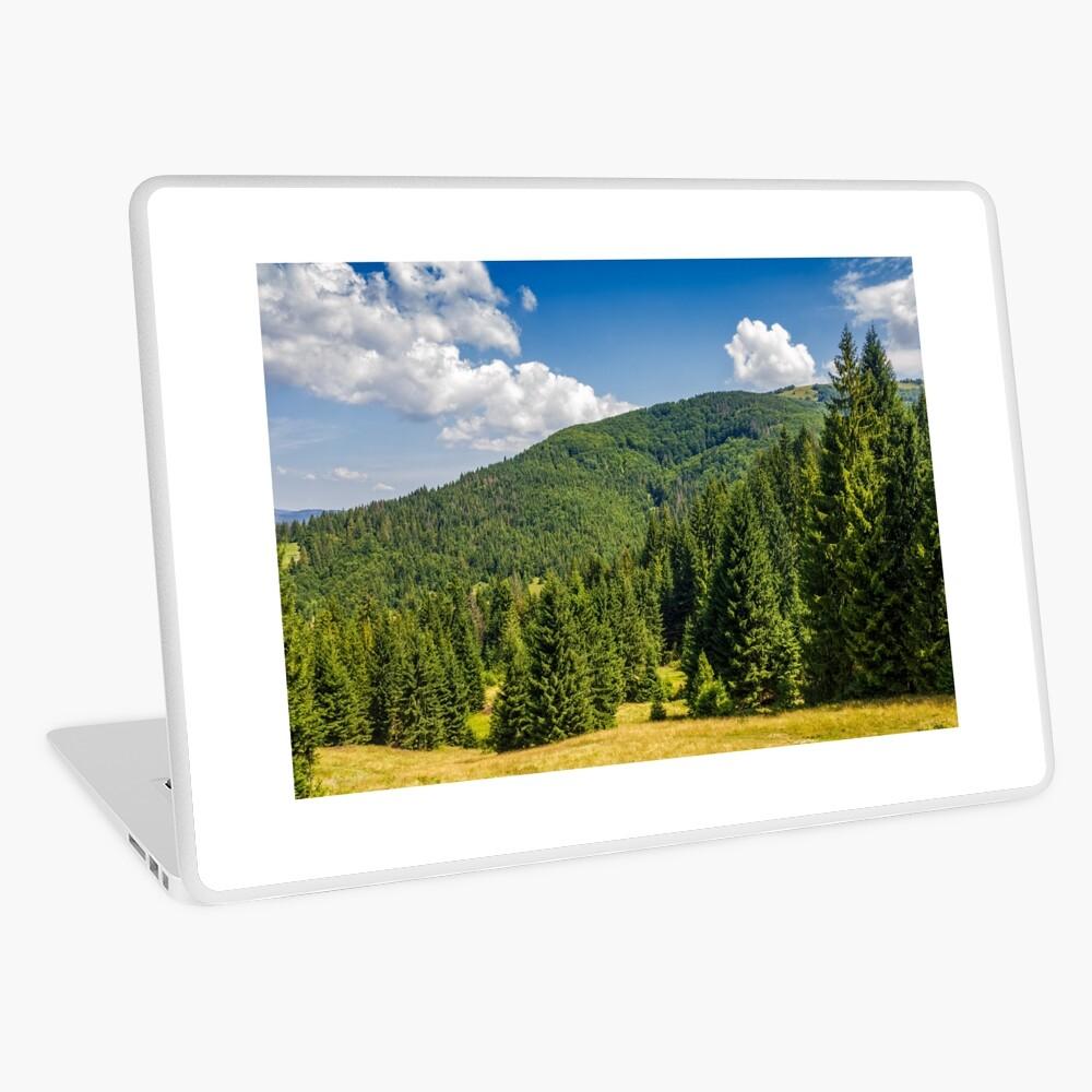 pine forest in summer landscape Laptop Skin