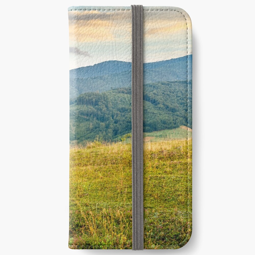 grassy meadow in mountains at sunrise iPhone Wallet