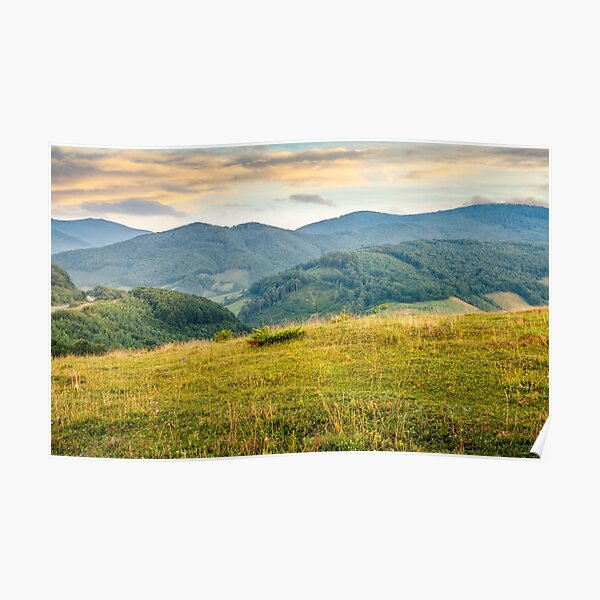 grassy meadow in mountains at sunrise Poster
