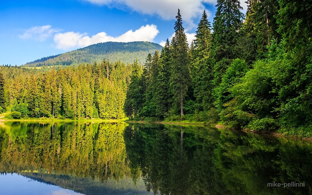 mountain lake among the forest by mike-pellinni