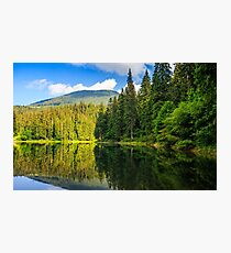 mountain lake among the forest Photographic Print