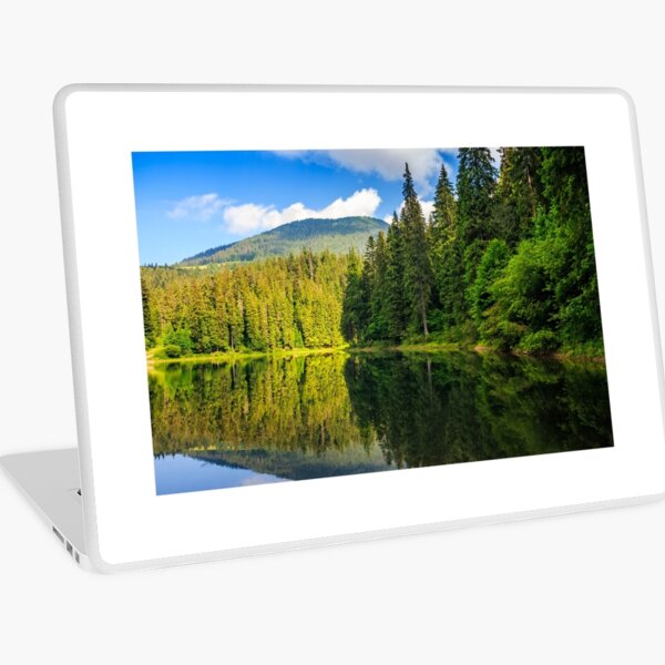 mountain lake among the forest Laptop Skin