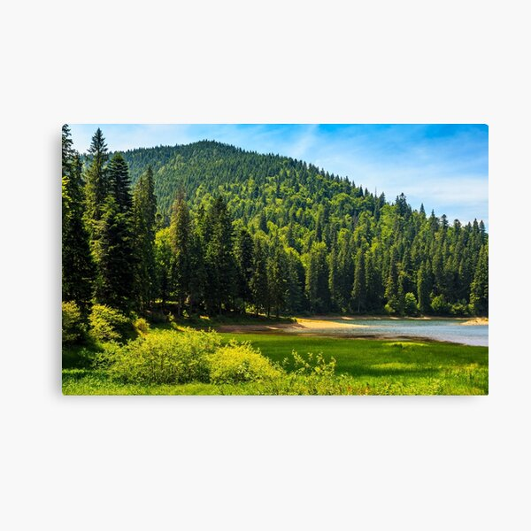 mountain lake among the forest Canvas Print