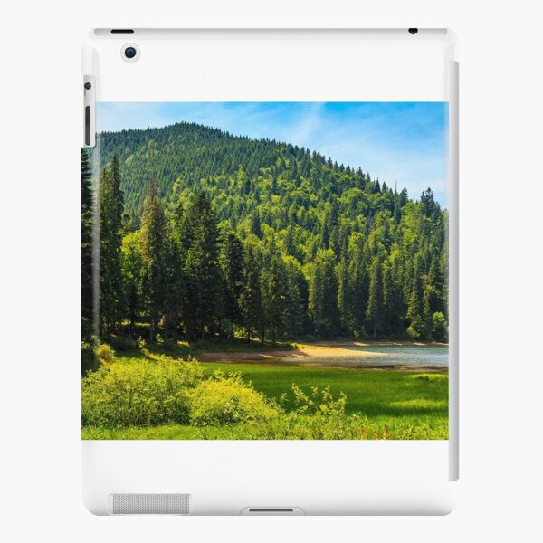 mountain lake among the forest iPad Snap Case