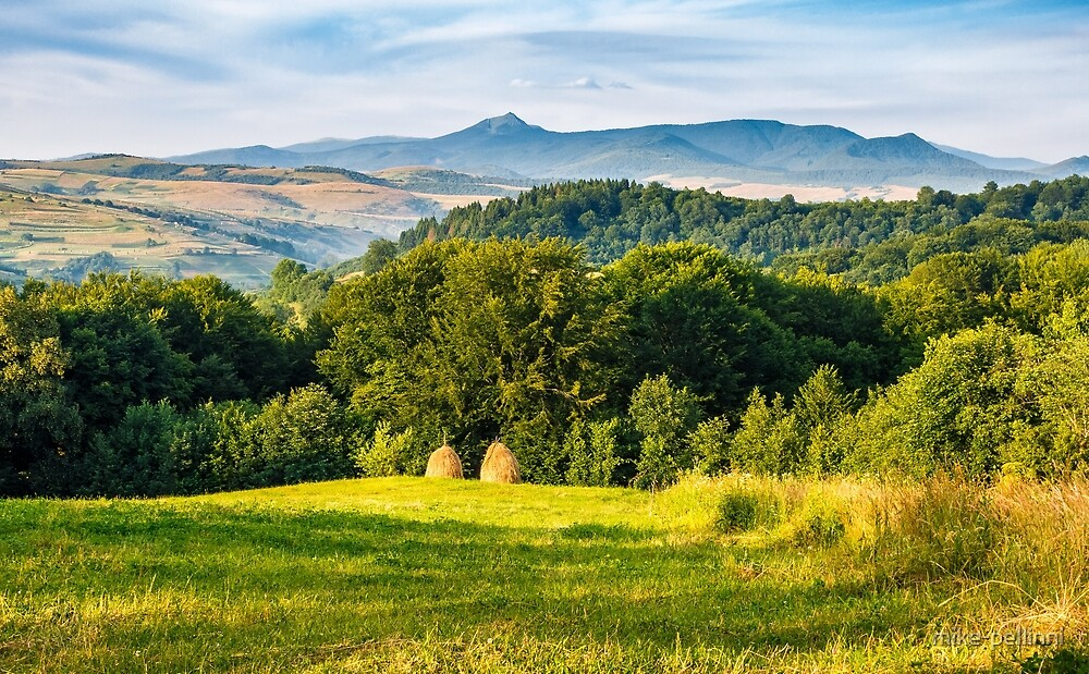 stacks of hay on the hill side by mike-pellinni