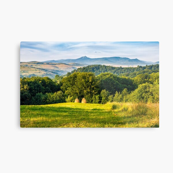 stacks of hay on the hill side Metal Print