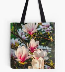 Magnolia flower blossom in spring Tote Bag