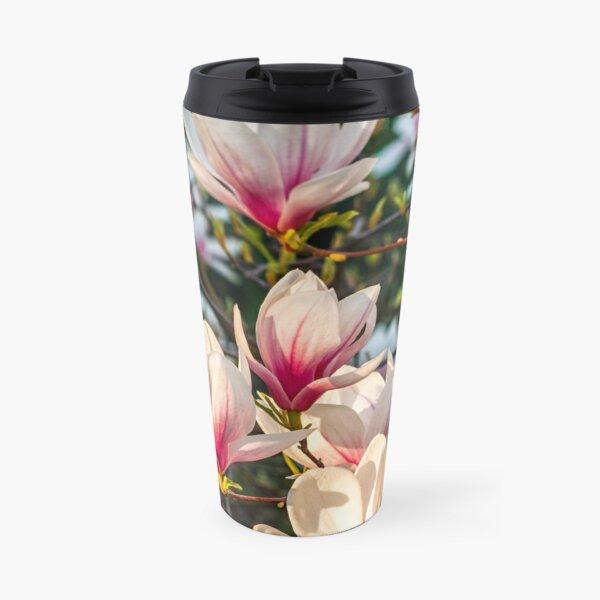 Magnolia flower blossom in spring Travel Mug