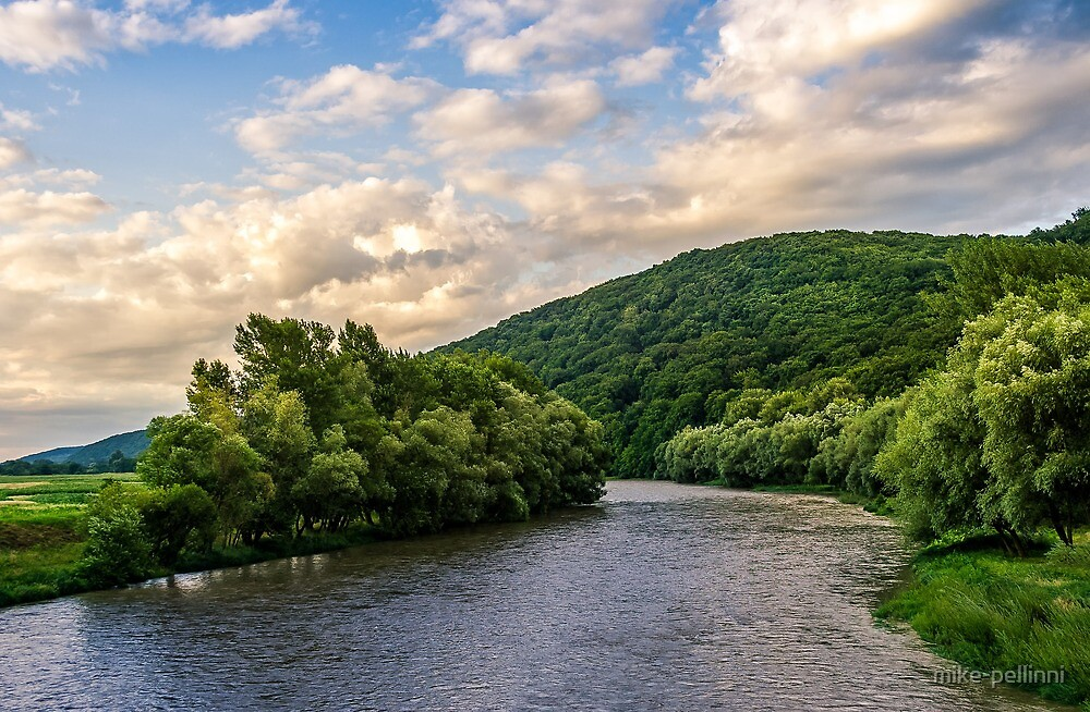 River among the forest in picturesque Carpathian mountains in summer by mike-pellinni