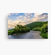 River among the forest in picturesque Carpathian mountains in summer Canvas Print