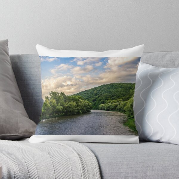 River among the forest in picturesque Carpathian mountains in summer Throw Pillow