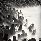 Sea monsters by marshall calvert  IPA