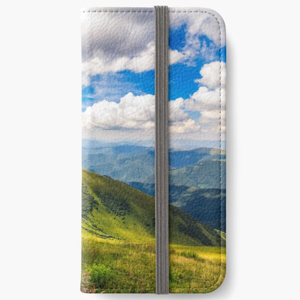 grassy hillside on mountain in summer iPhone Wallet
