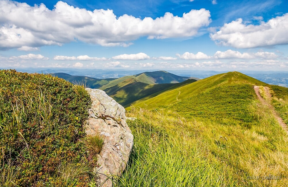 meadow with boulders in Carpathian mountains in summer by mike-pellinni