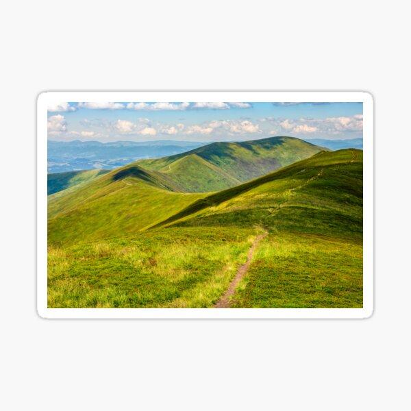 path through a meadow on mountain ridge Sticker