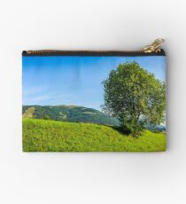 tree in rural area on beautiful summer day Studio Pouch