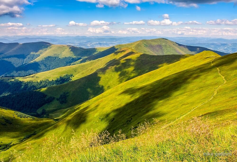 grassy hillside on mountain in summer by mike-pellinni