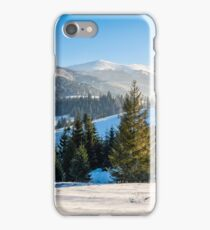 spruce forest on snowy meadow in high mountains iPhone Case/Skin