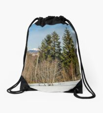 spring has sprung in mountain forest Drawstring Bag
