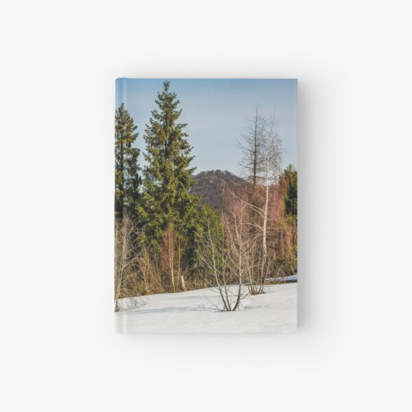spring has sprung in mountain forest Hardcover Journal