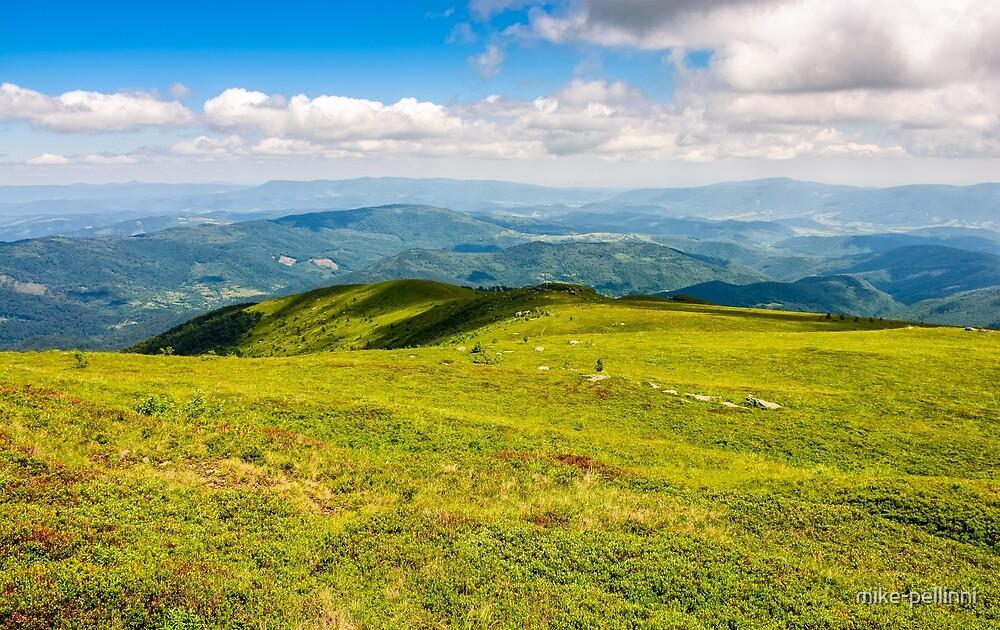 summer meadow on hillside of mountain range by mike-pellinni