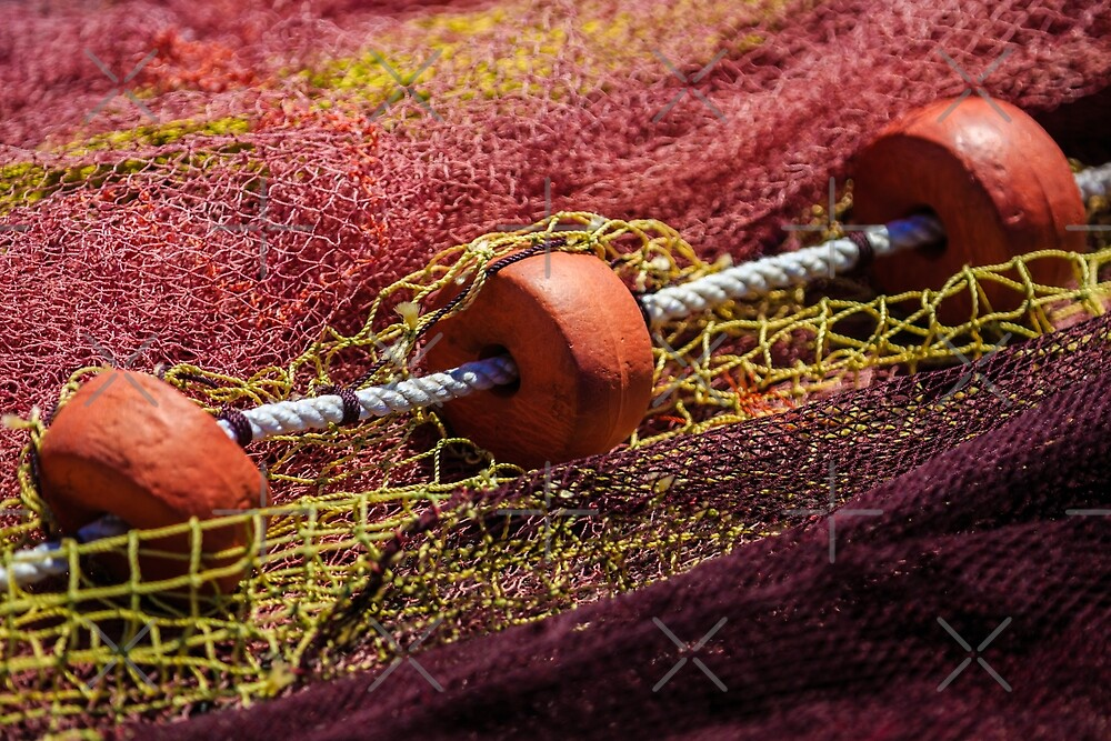 Fishing net with floats by Dave  Knowles