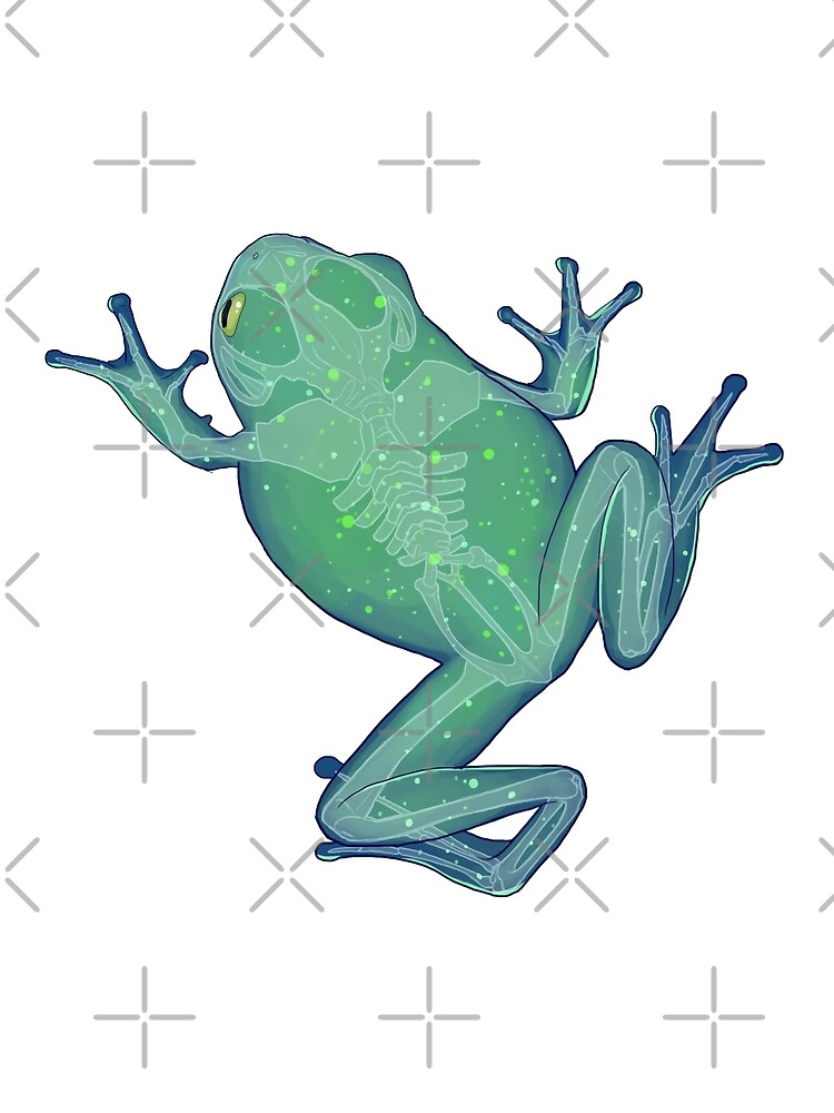 Constellation frog by Kmoonleaf