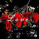 Love by Valeria Lee