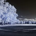 park sports field ir pan by BigAndRed