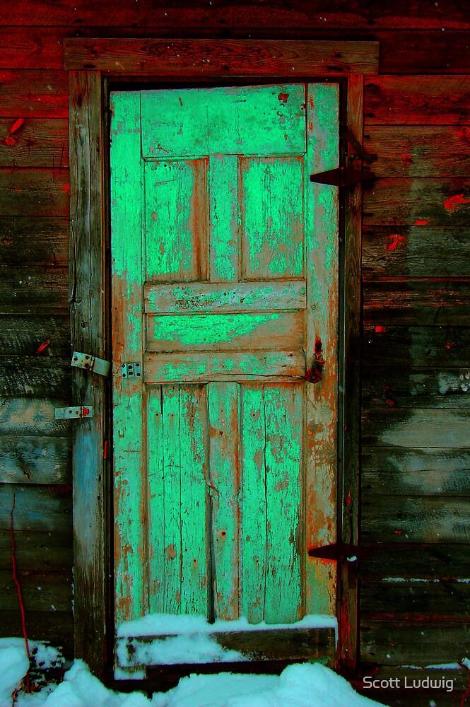 Doors of Perception by Scott Ludwig