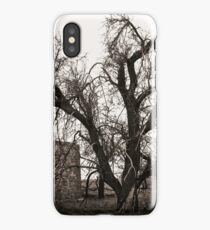 Stark tree at Tipperary iPhone Case/Skin