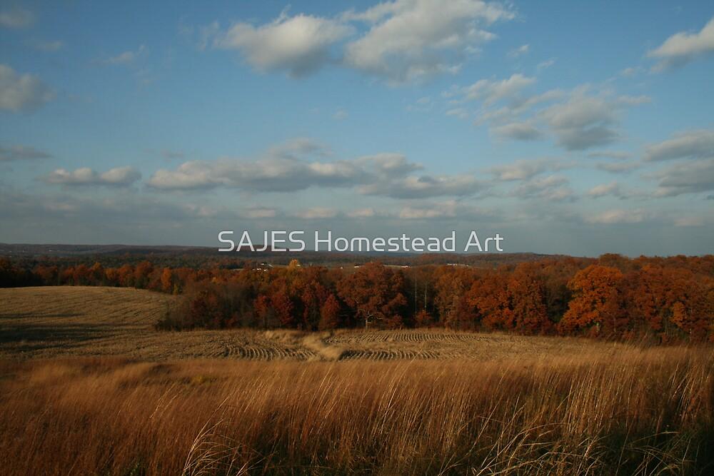 Kentucky Autumn by Sue Thompson