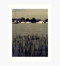 Lake Macquarie  Art Print