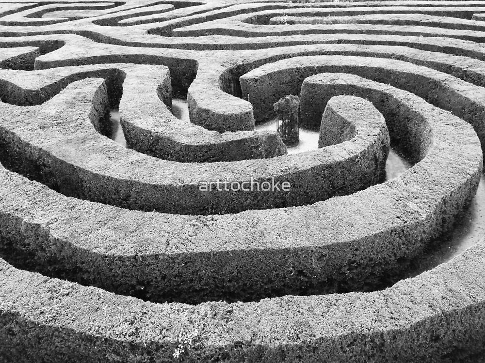 Hedge Maze 2 by arttochoke