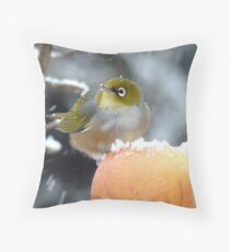 Geeeezzz!! Guess What I Woke Up To This Morning! - Wax-Eye - NZ Throw Pillow