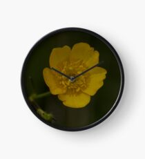 Meadow Buttercup - Burntollet Woods, County Derry Clock