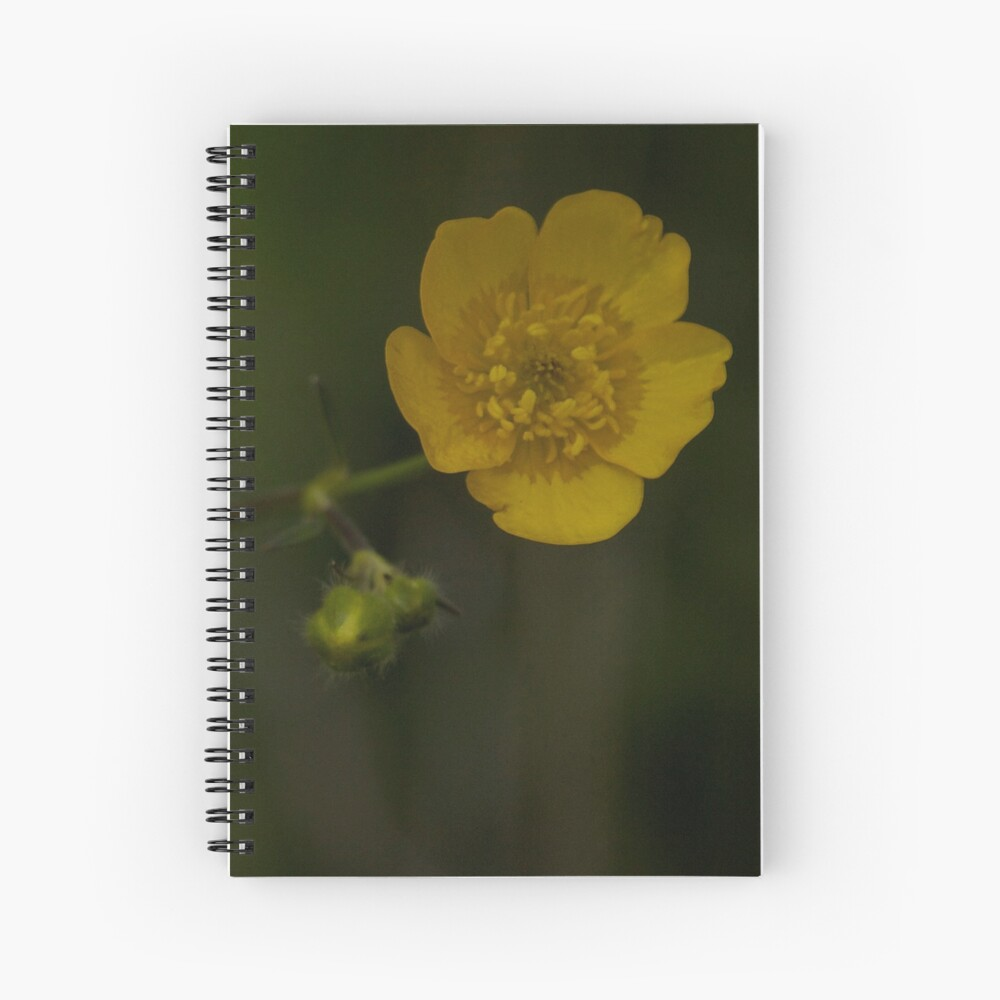 Meadow Buttercup - Burntollet Woods, County Derry Spiral Notebook