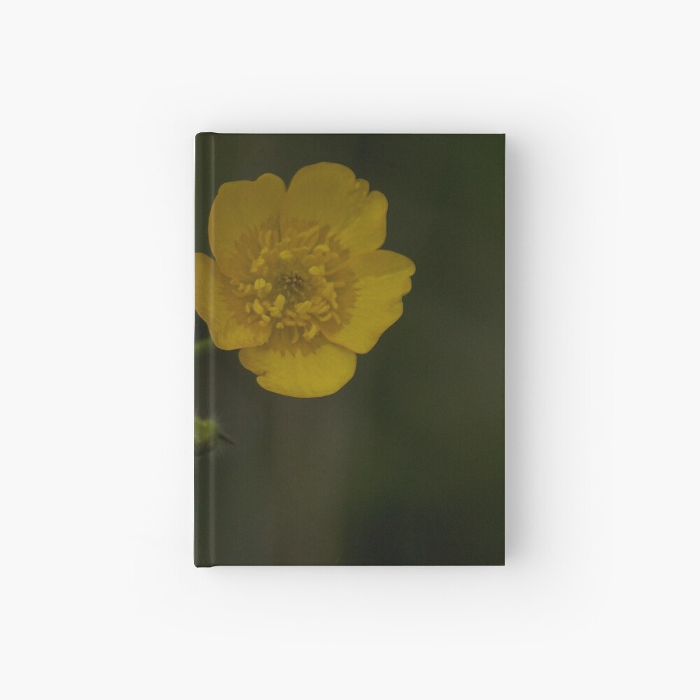 Meadow Buttercup - Burntollet Woods, County Derry Hardcover Journal