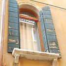 Window, Venice, Italy by waddleudo