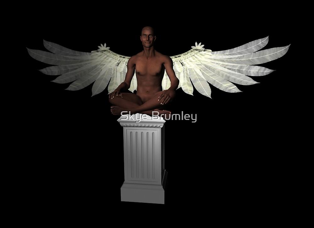 Dark Angel by Skye Brumley