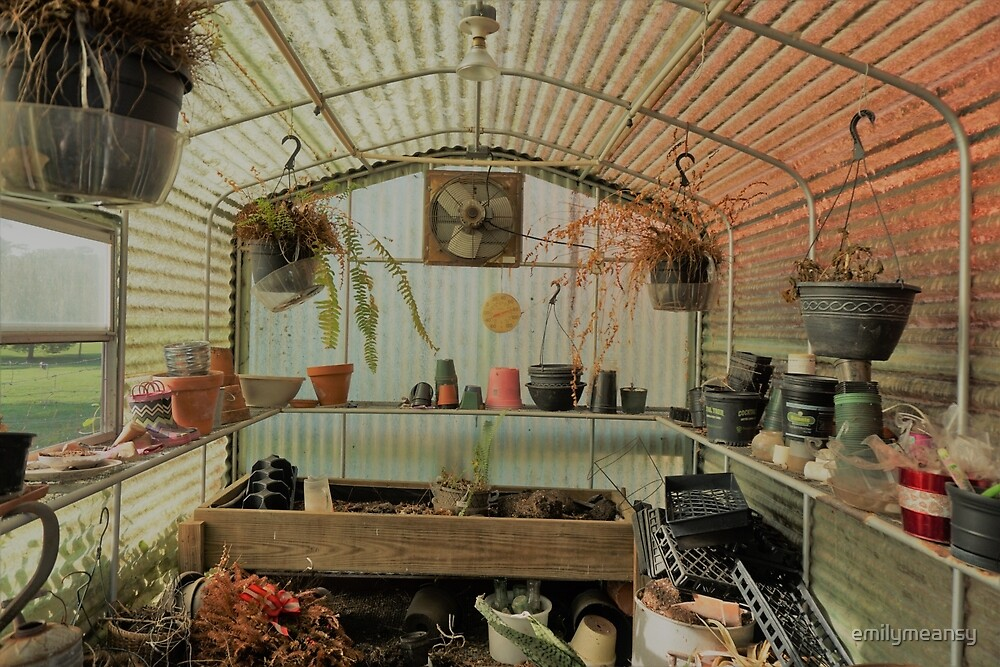 Colorful and Rustic Green House by emilymeansy