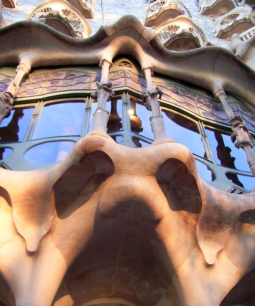 Facing Gaudi by Elaine Stevenson