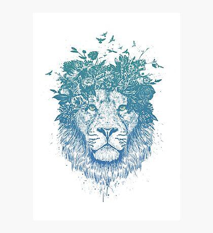 Floral lion Photographic Print