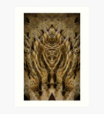 natural symmetry? Art Print