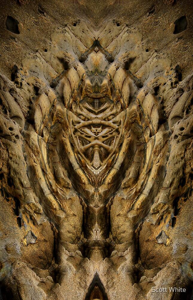 natural symmetry? by Scott White