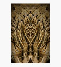 natural symmetry? Photographic Print